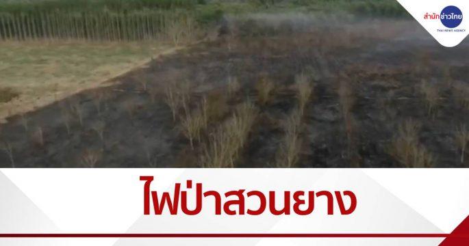 ระดมดับไฟป่ากลางสวนยาง วอดกว่า 100 ไร่