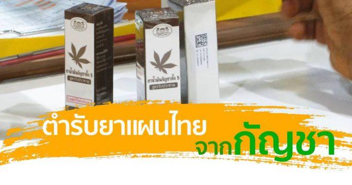 พัฒนาตำรับยาแผนไทยจากกัญชา